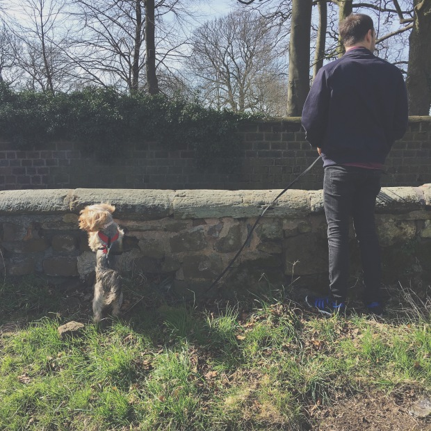 My husband and our dog peering over the wall in the park near our new house